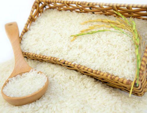 Dịch vụ kiểm nghiệm sản phẩm Gạo