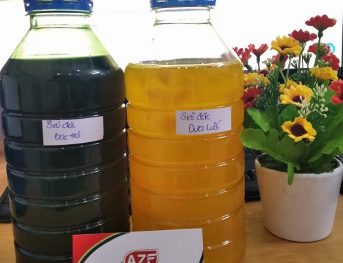 Tự Công bố sản phẩm Si rô (syrup) – AZF hướng dẫn từ a-z