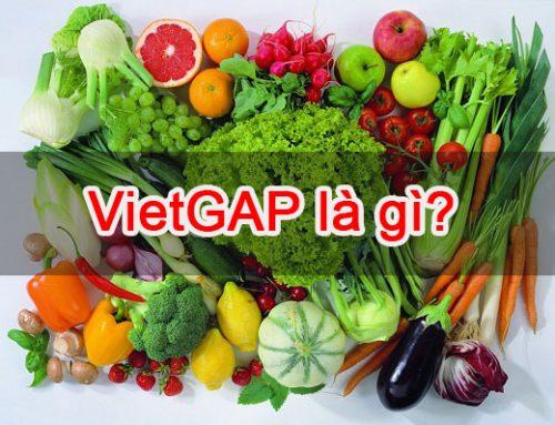 VietGAP là gì